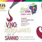 """Solopaca, Festa dell'Uva. Incontro dal tema: """"Il vino: risorsa e vanto per il Sannio"""""""