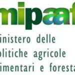 MIPAAF, terremoto: dal Governo nuovi interventi urgenti per agricoltori e allevatori