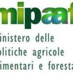 MIPAAF, martedi' 21 febbraio alla Camera presentazione rapporto ISMEA-SVIMEZ su agricoltura del mezzogiorno