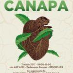 Coltivazione e uso industriale della canapa in Italia, esperti e operatori ne hanno parlato al Parlamento Europeo