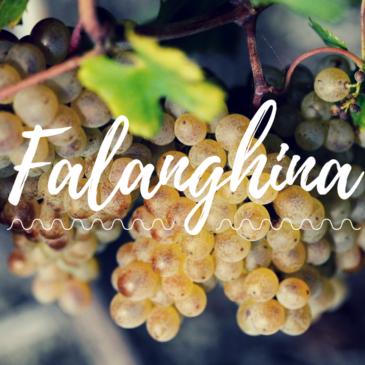 Sannio Falanghina. Città europea del vino 2019
