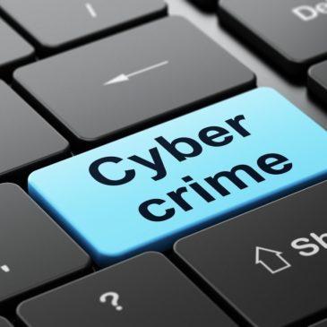 I crimini informatici:  l'informatica al servizio del processo penale