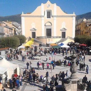 Città dell'olio, in Campania per un'esperienza di gusto e cultura con la Camminata tra gli olivi