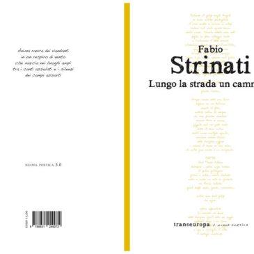 'Lungo la strada un cammino', il Sannio protagonista dei componimenti del poeta Strinati
