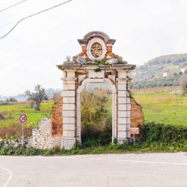 Pillole dalla zona rossa: l'oro verde di San Lorenzo Maggiore