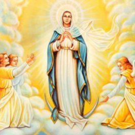 L'Assunzione della Vergine Maria in cielo