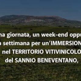 Guardia Sanframondi: domani sera a Vinalia per lo show cooking Antonio Ruggiero ed Emilio Pompeo