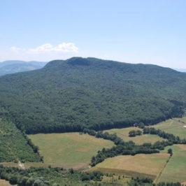 Immagini dal Sannio: la Riserva naturale di Collemuccio – Montedimezzo