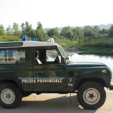 """Di Maria: """"Bene potenziamento polizia provinciale"""""""