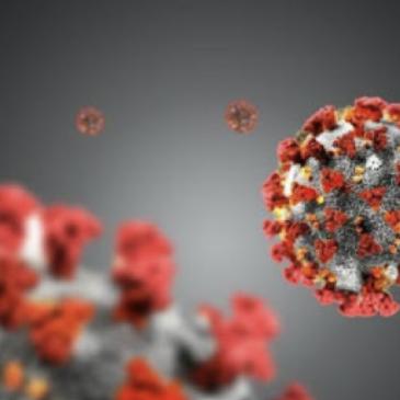 Accadde oggi: 27 novembre 2002, primi casi di coronavirus Sars Cov-1