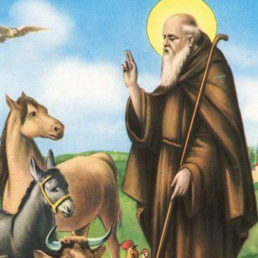Oggi la Chiesa celebra Sant'Antonio Abate, patrono degli animali, pizzaioli e fuoco