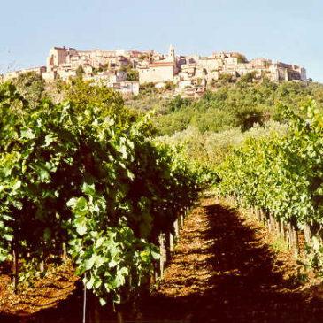 Immagini dal Sannio: Torrecuso, il borgo dell'Aglianico e delle viole d'oro