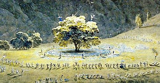 Immagini dal Sannio: mito e leggenda del Noce di Benevento