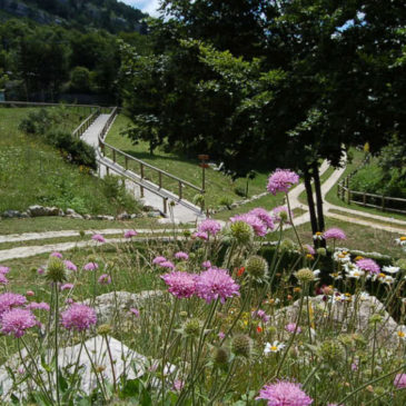 Immagini dal Sannio: il Giardino della Flora Appenninica di Capracotta