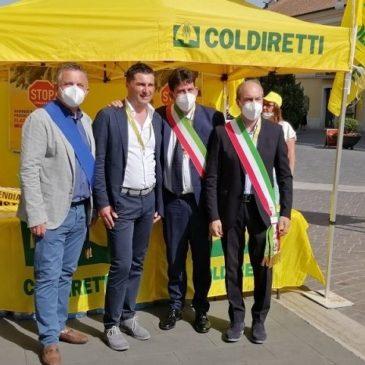 """Circolazione incontrollata dei cinghiali, Di Maria: """"Situazione allarmante e non più rinviabile"""""""