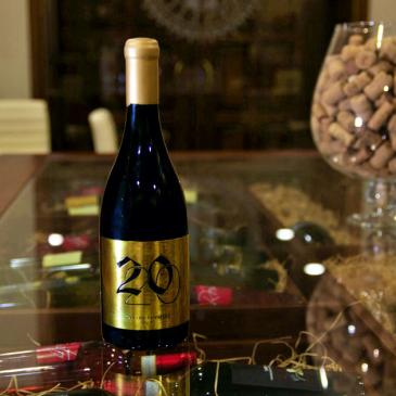 Tra i vini più buoni d'Italia, il Rosso Igt delle Cantine Iannella di Torrecuso